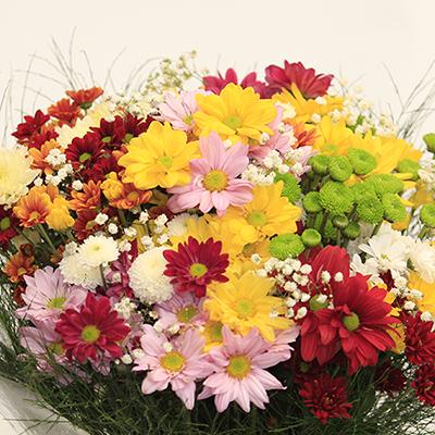 Buquê flores do campo no celofane