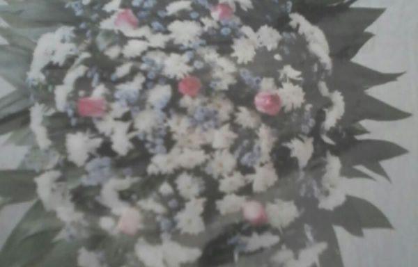 Coroa de Flores do Campo